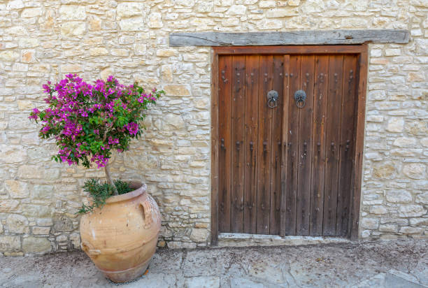 Old door in the wall stock photo