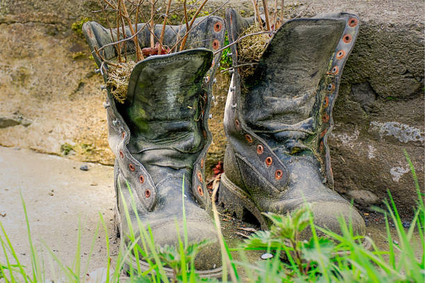 Old dusty and rusty boots used as flower pots, popular garden decoration on british countryside.Vintage shoes outdoor.Natural living, Uk. stock photo