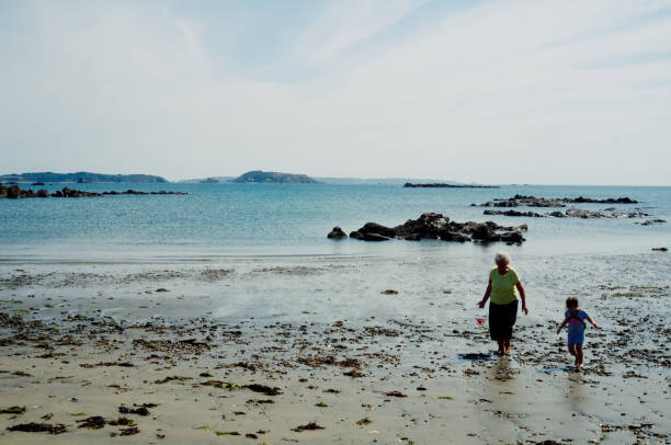 old elderly senior woman grandmother gathering sea shells with her grand daughter St. Peter Port , Guernsey Island / Channel Islands - AUG 20 2015 : old elderly senior woman grandmother gathering sea shells with her grand daughter manche stock pictures, royalty-free photos & images
