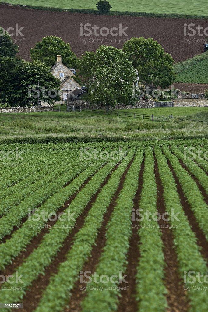 Old English Farm royalty-free stock photo