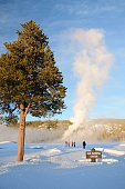 View of old faithful in full eruption from Observation point