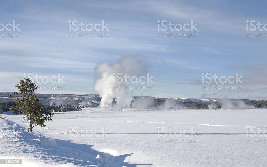 Old Faithful Geyser Basin In Winter Yellowstone National