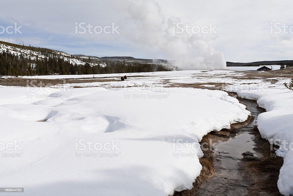Old Faithful Geyser, Yellowstone NP stock photo