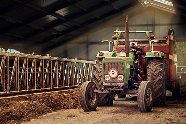 Geyser Old faithful - Photo