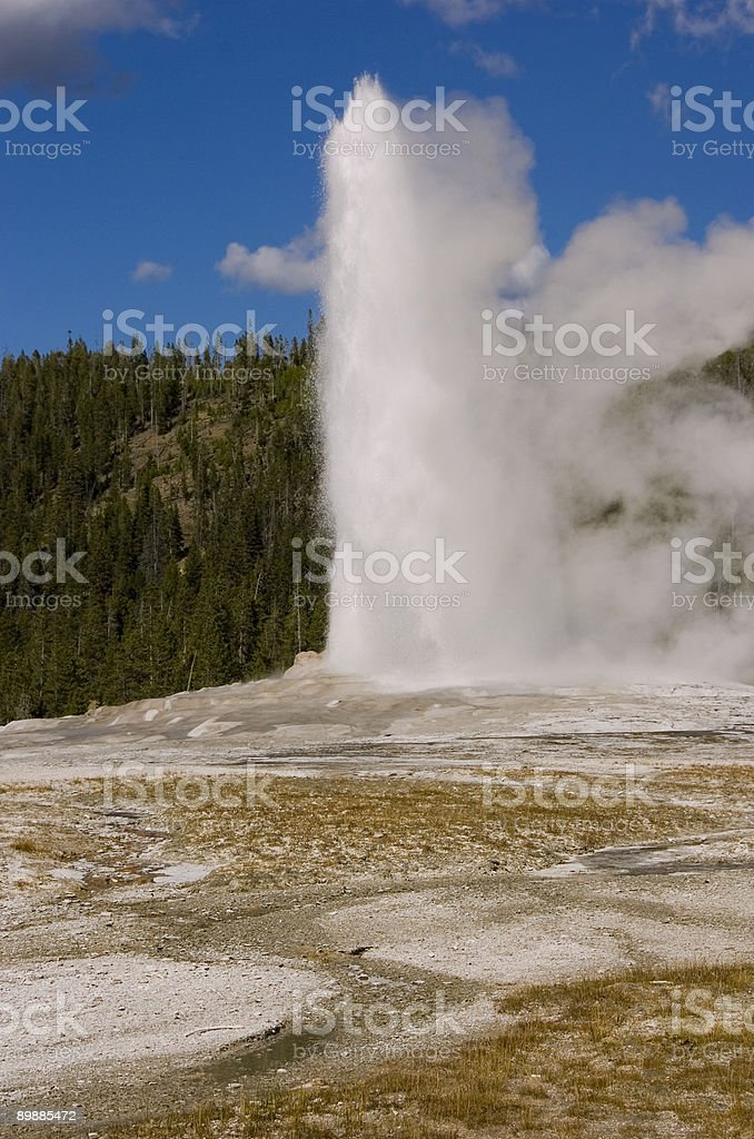 Old Faithful royalty-free stock photo