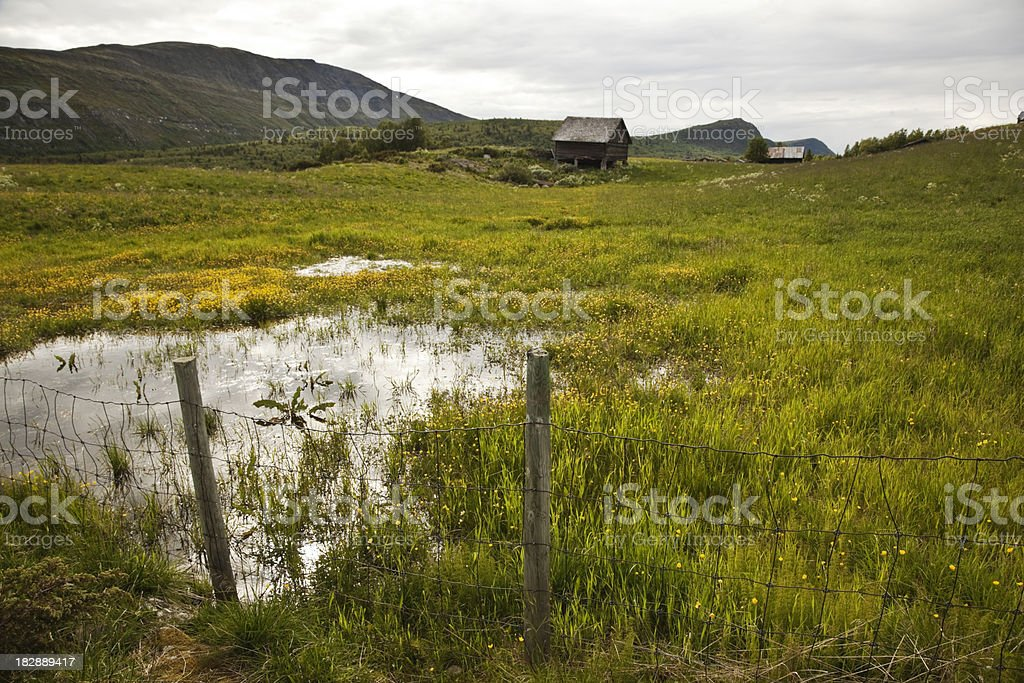 Old farm house and field of buttercups. royalty-free stock photo