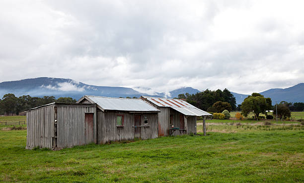 24 Shed Farmhouse Corrugated Iron Old Stock Photos, Pictures & Royalty-Free  Images
