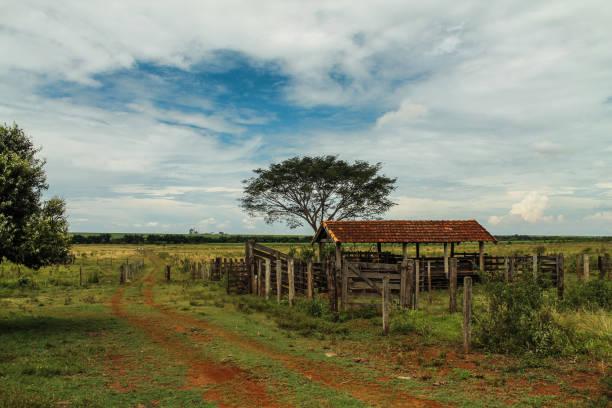 Old farm in Brazil