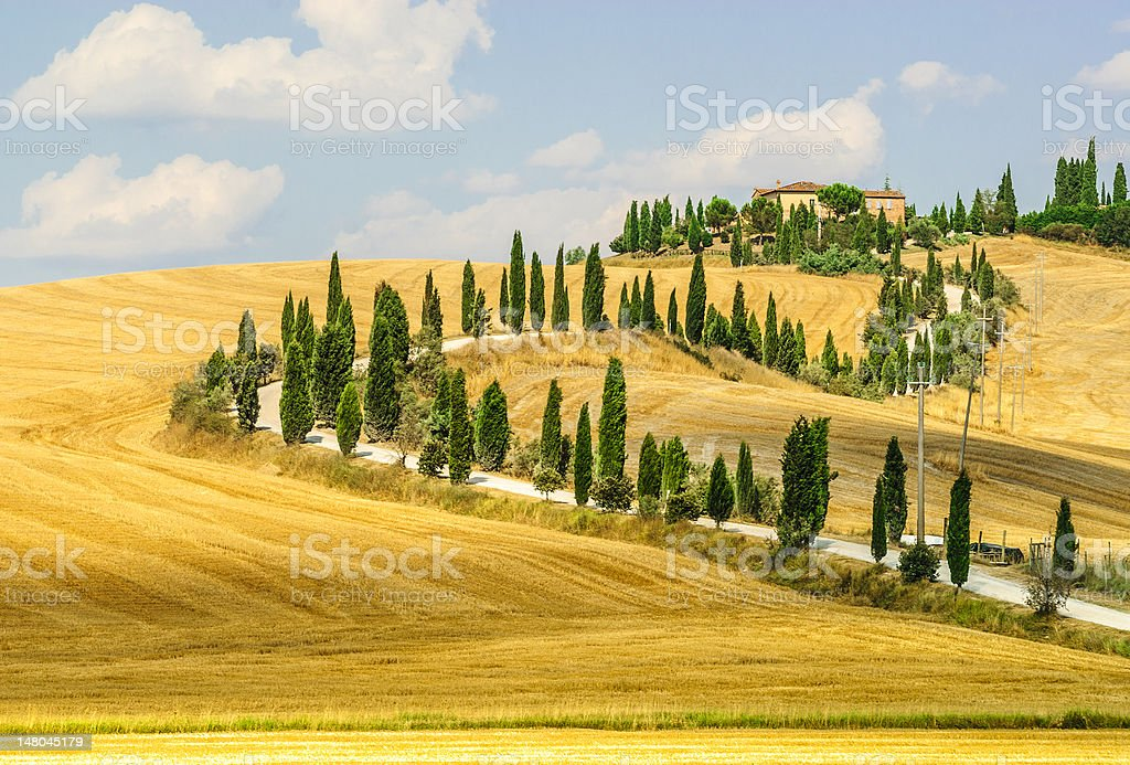 Old farm in Val d'Orcia (Tuscany) stock photo