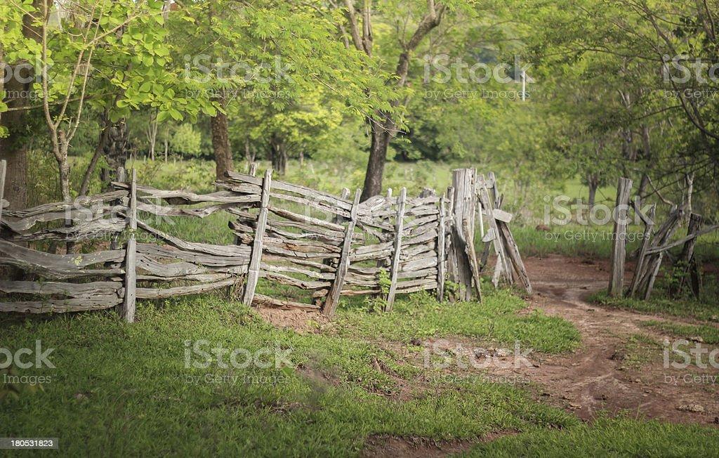 Old farm stock photo
