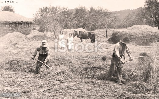 Farmers threshing wheat animals. Vintage 1930. Country house. Two girls looking at the work of farmers.