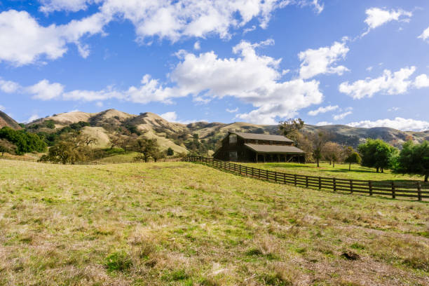 Old farmhouse in Sunol Regional Wilderness on a sunny winter days, east San Francisco bay area, California Old farmhouse in Sunol Regional Wilderness on a sunny winter days, east San Francisco bay area, California alameda california stock pictures, royalty-free photos & images