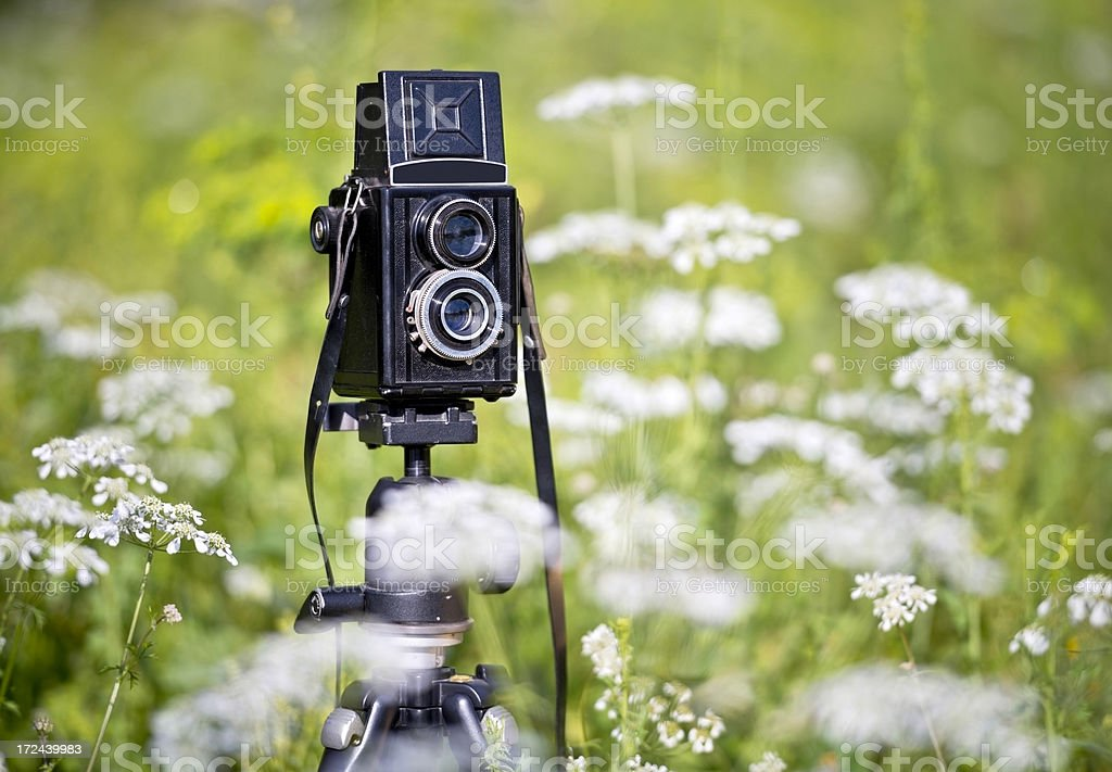 Old Fashioned Camera royalty-free stock photo