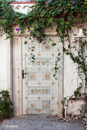 Old fashioned wood door under green leafs on a village street