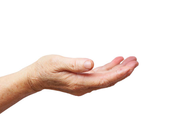 Old female hand begging stock photo
