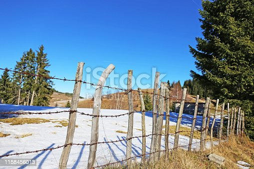 Old fence and golden grass and snow in background