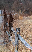 istock Old Fence in Spring 1216804417