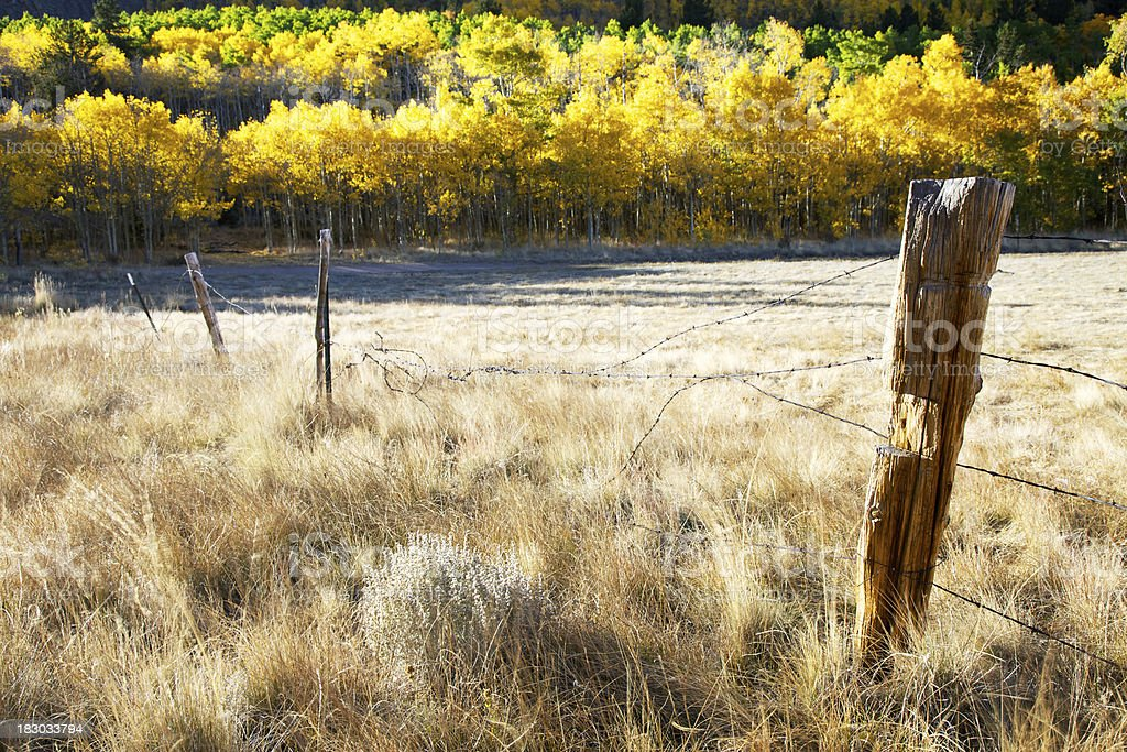Old Fence Post in Colorado royalty-free stock photo