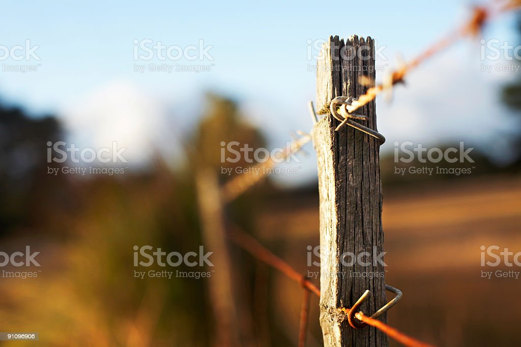 Old fence post stock photo