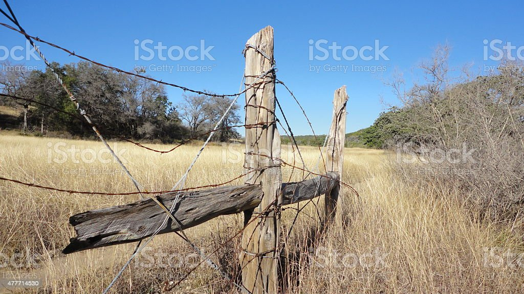Old fence posts in Texas stock photo