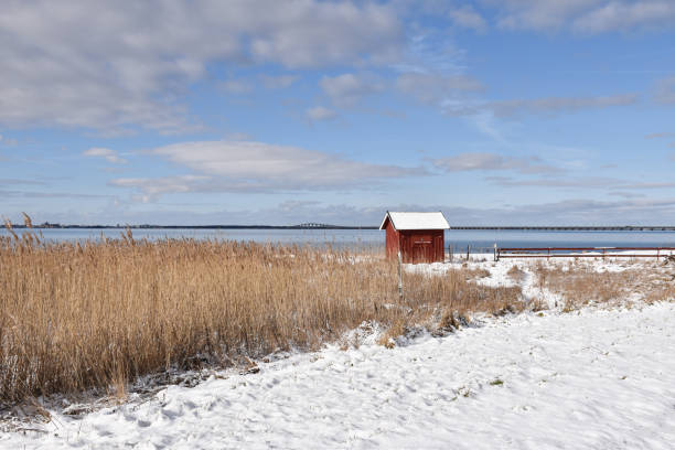 Old fishing cabin by the coast stock photo