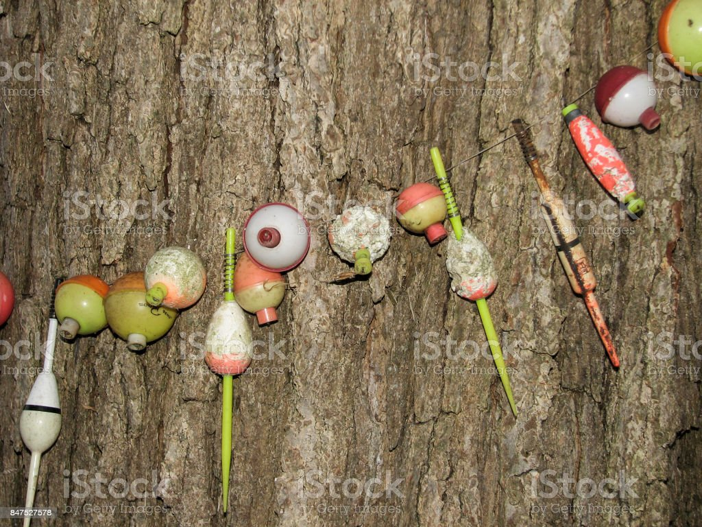 Old fishing lures strung around a tree stock photo