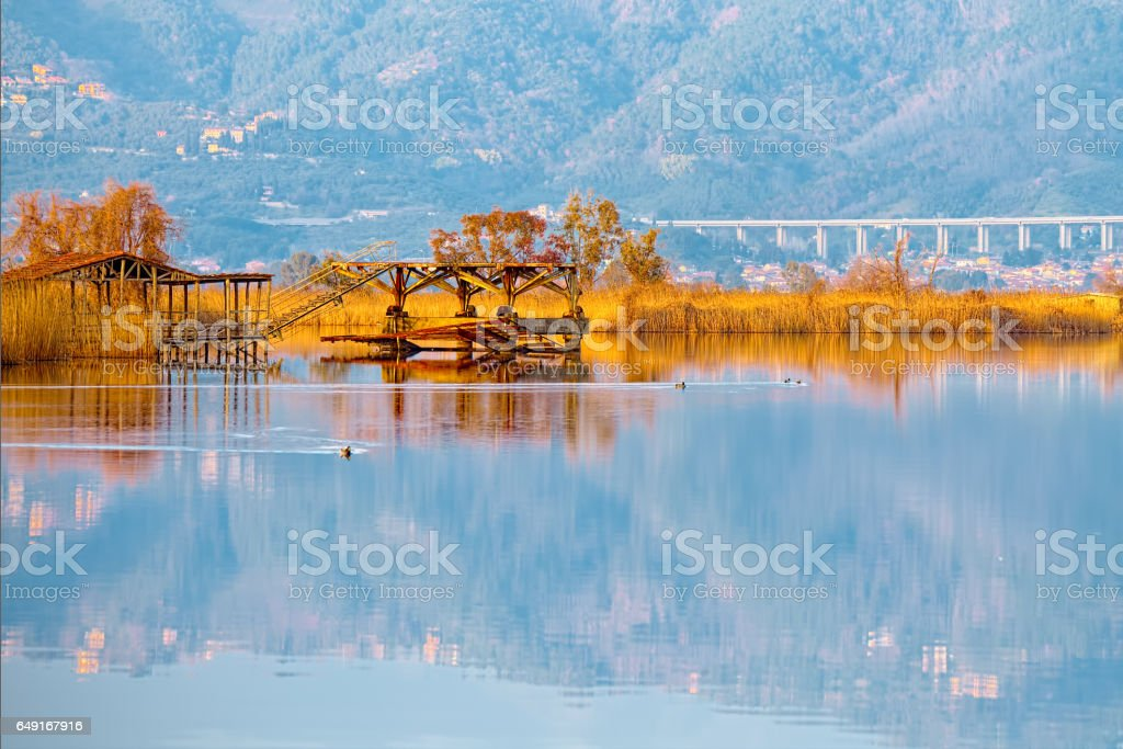 Old fishing pier on lake Massaciuccoli (Torre del Lago Puccini, stock photo