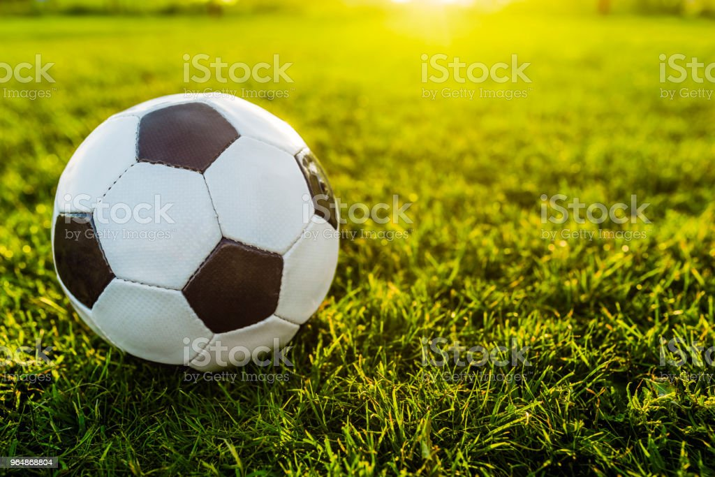 Old football on green yard royalty-free stock photo