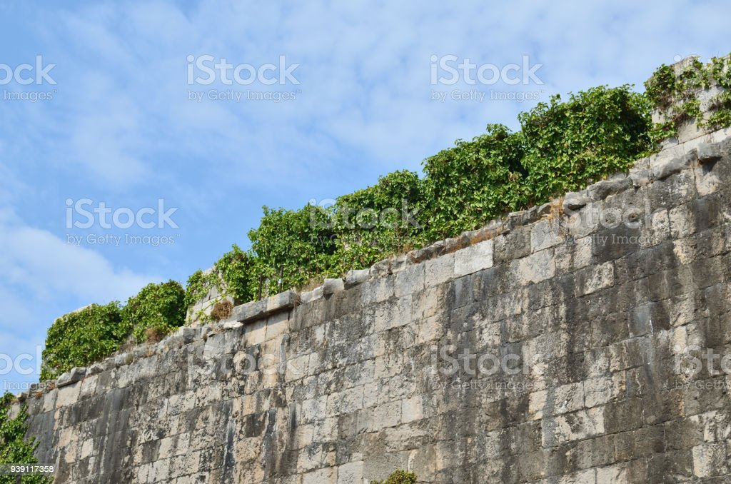 Old fortress wall overgrown with green plants and with blue sky in a...
