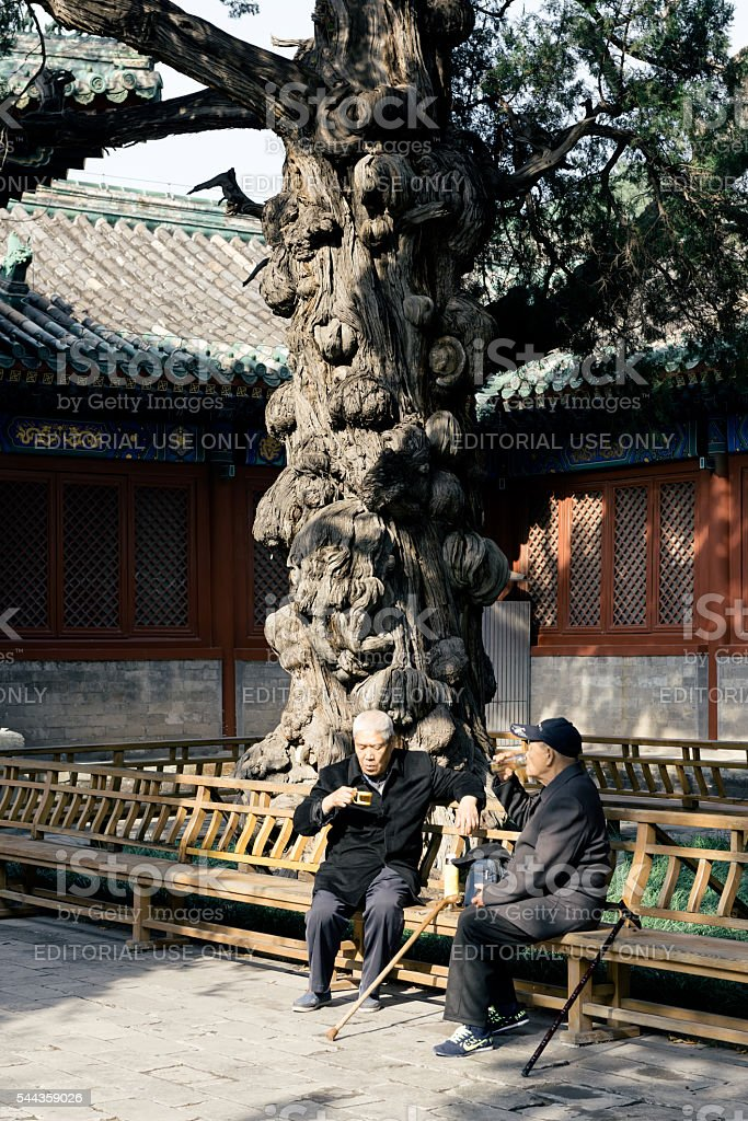 Old Friends at the Temple of Confucius, Beijing stock photo