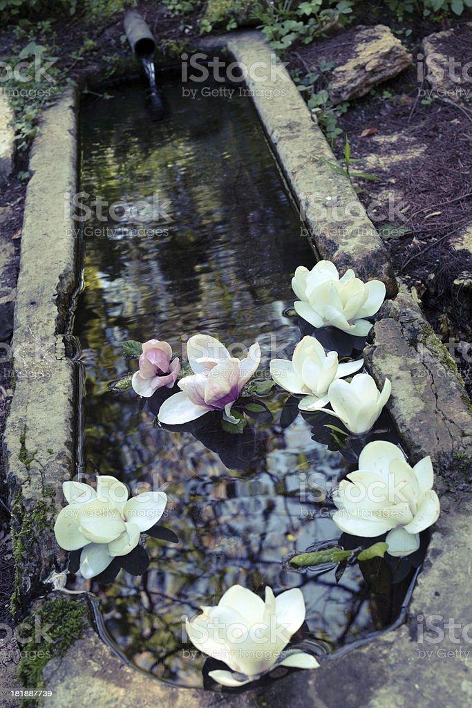 old garden royalty-free stock photo