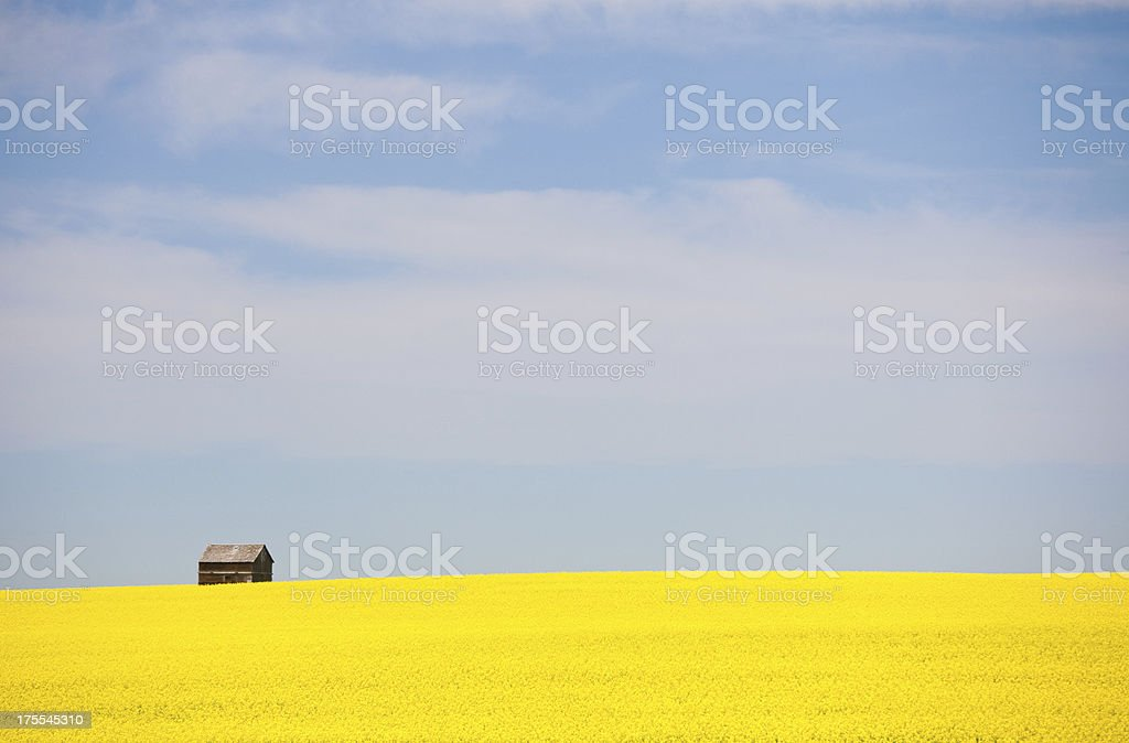 Old Grain Bin on the Great Plains royalty-free stock photo