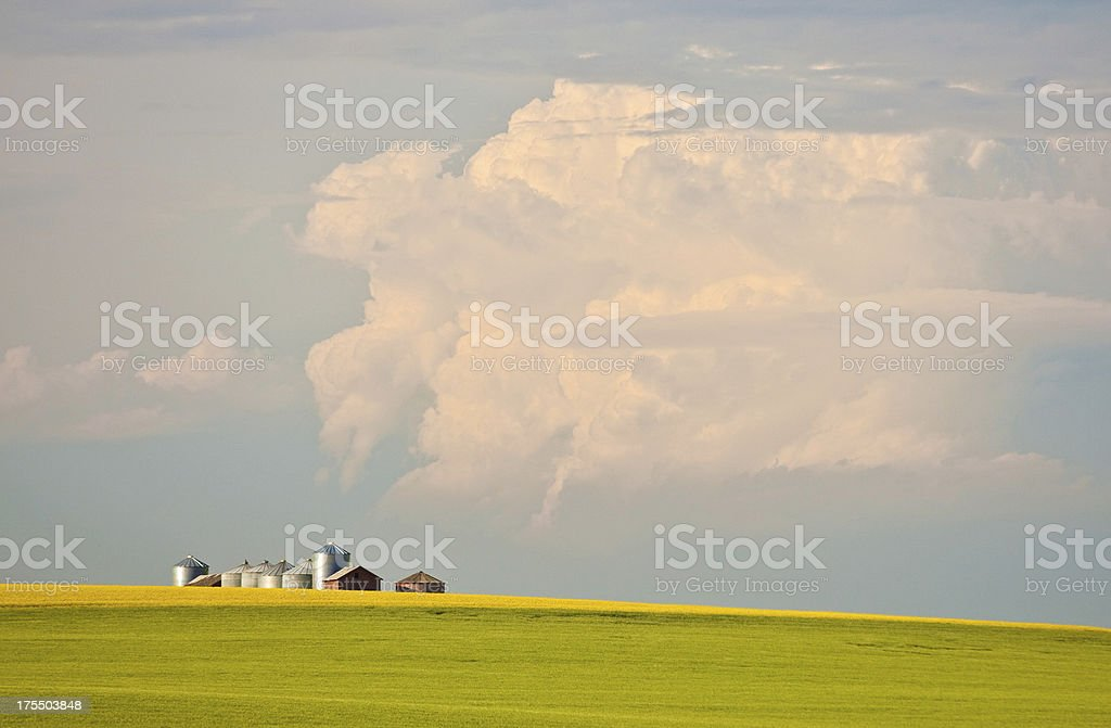 Old Grain Bins on the Plains stock photo