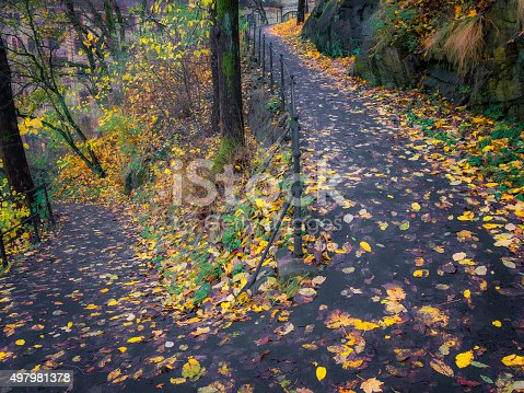 Photo of old stairs , autumn view. Nature photography
