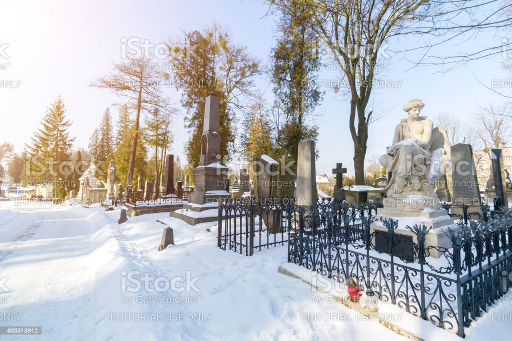 LVIV, UKRAINE - Feb 14, 2017: Old graves in the Lychakivskyj cemetery of Lviv, Ukraine. Officially State History and Culture Museum-Preserve - Lychakiv Cemetery stock photo