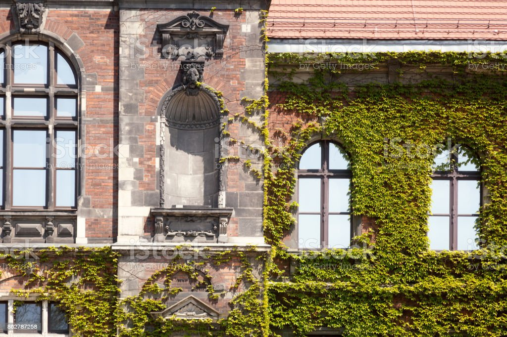 Old Green skyscraper building with plants growing on the facade. stock photo