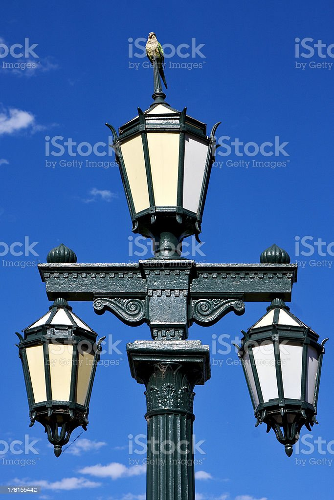 old green street lamp and parrot royalty-free stock photo