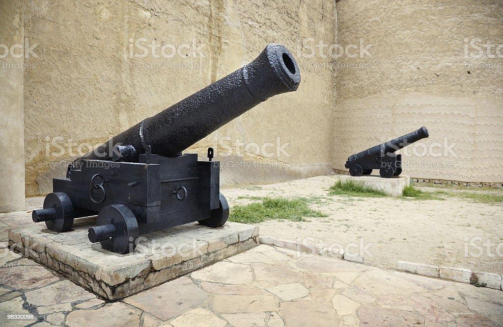 Old guns royalty-free stock photo
