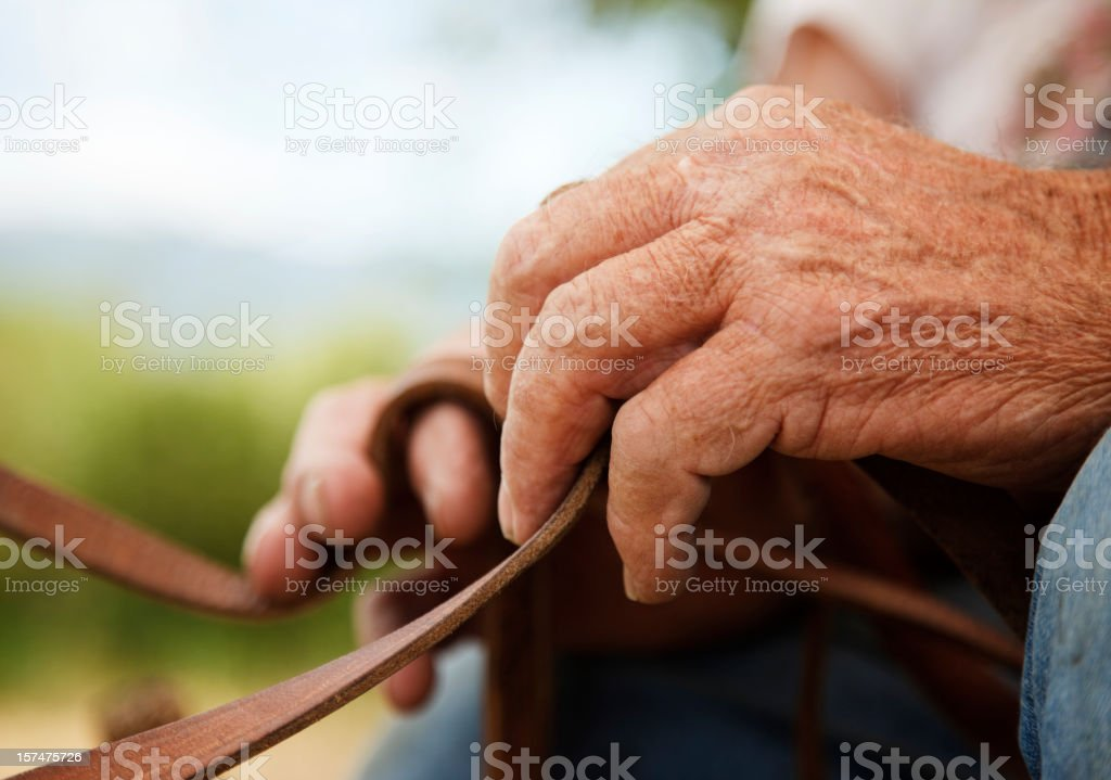 Old Hands Holding Reigns stock photo