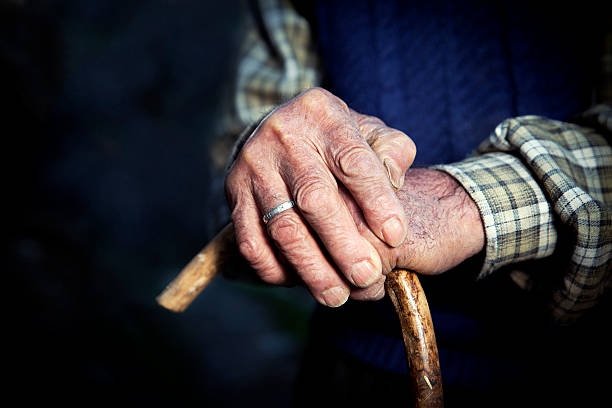 Old hands with walking stick stock photo