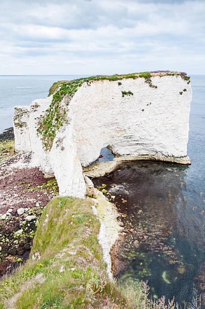 old harry rocks, dorset, regno unito - principe harry foto e immagini stock