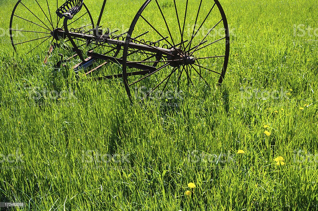 Old Hay Rake in a Spring Field royalty-free stock photo
