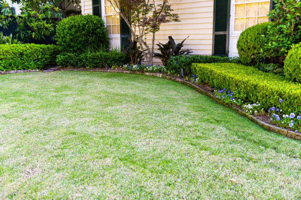 Old historic Garden district in New Orleans, Louisiana with green grass lawn garden, flowers and ornamental decorative bushes by house stock photo