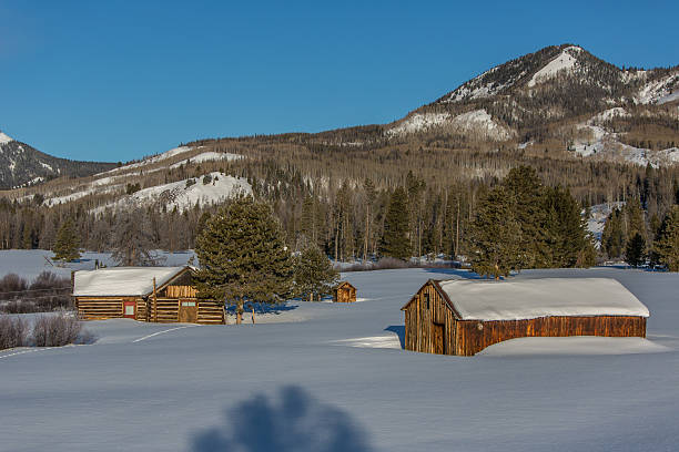 Old Homestead, Heavy Snow, and Mountains stock photo