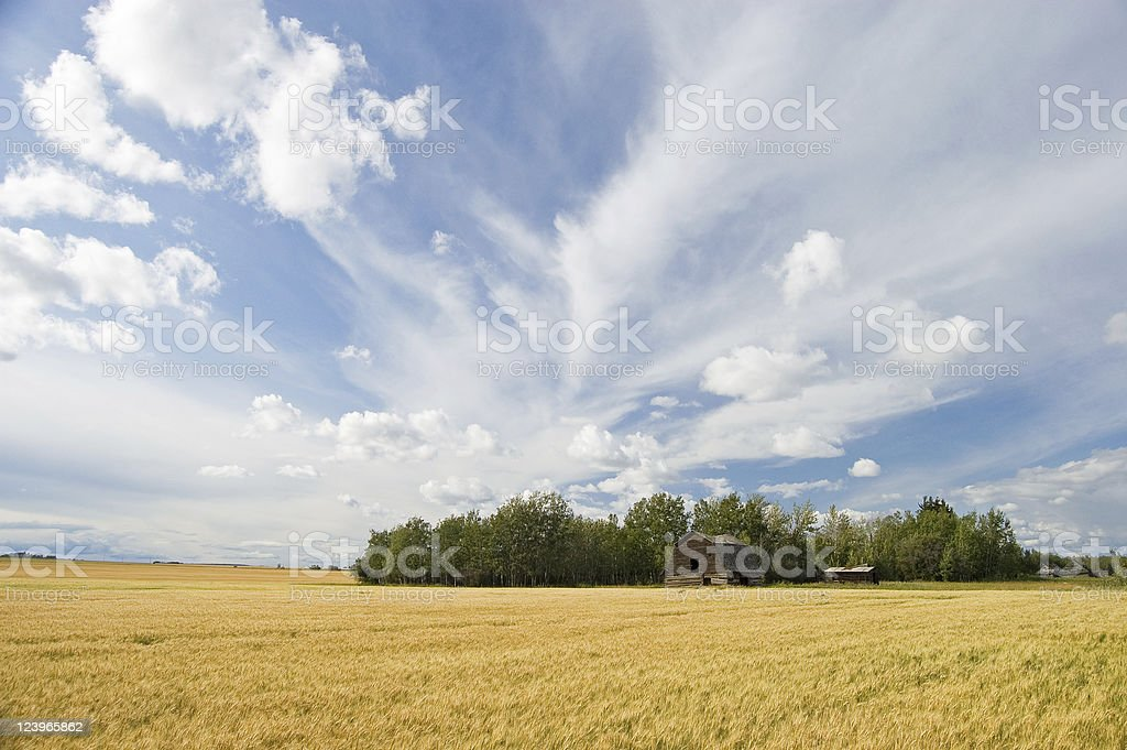 old homestead royalty-free stock photo