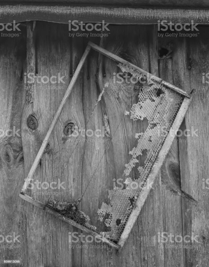 Old honeycomb frame hangs on the  barn wall stock photo