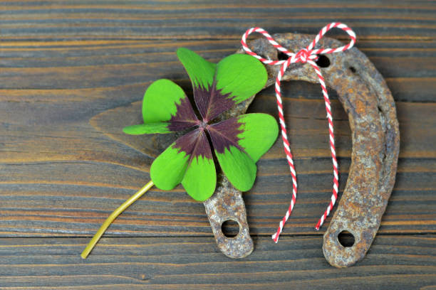 old horseshoe and lucky clover - happy st. patricks day stock photos and pictures