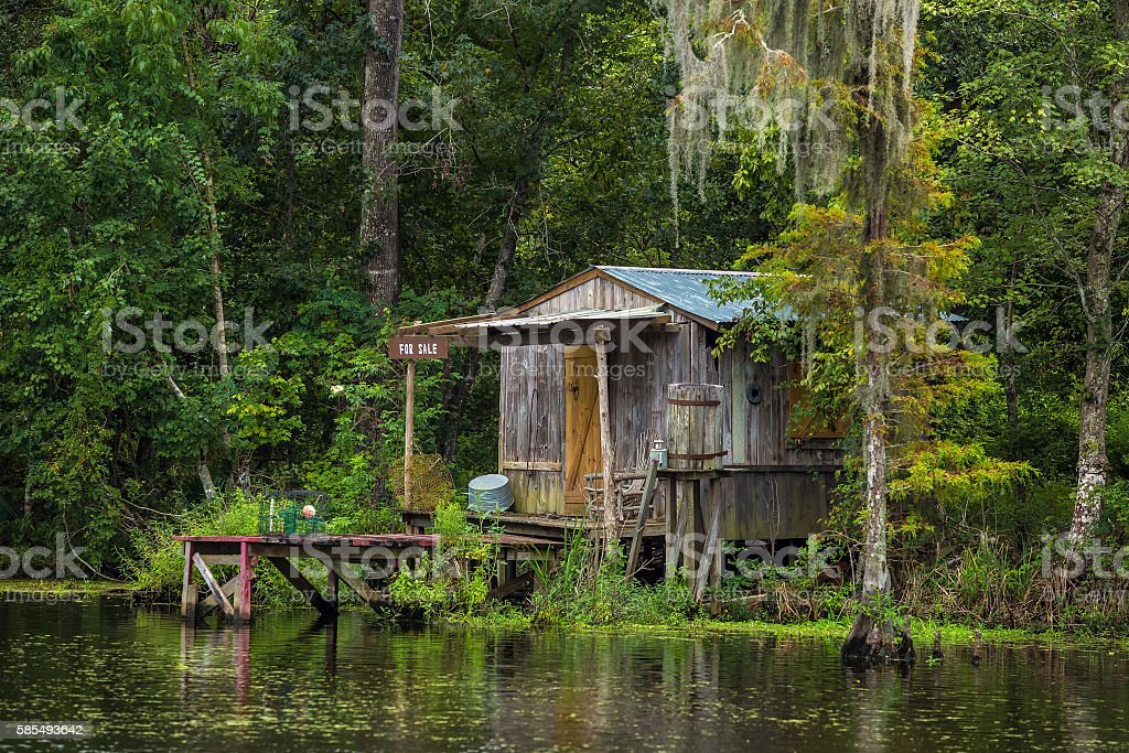 Old house in a swamp in New Orleans stock photo