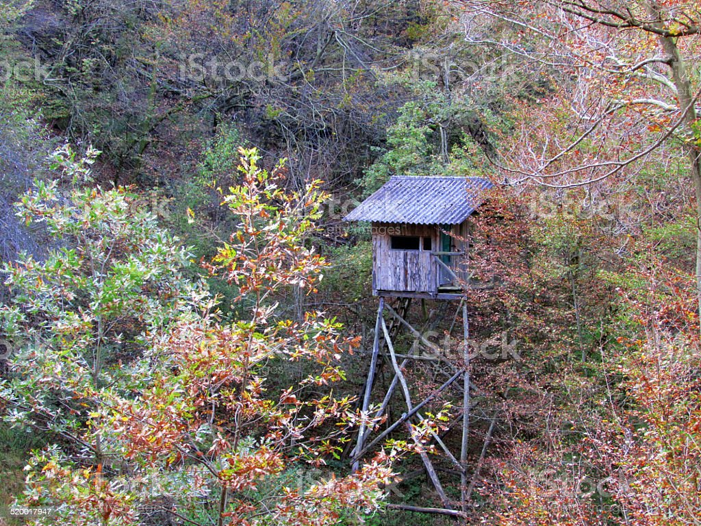 Old Hunting lookout stock photo