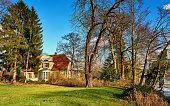 huge single oak tree on a spring meadow in the Allgau alps Bavaria,